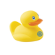 Single Ducky
