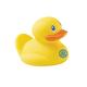 Six Quack