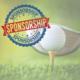 Individual Event Sponsorship - $1,500